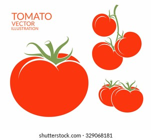Tomato. Isolated vegetables. Vector illustration