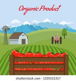 Tomato mockup in farm landscape background. Label design for tomato products. Flat color style vector illustration.