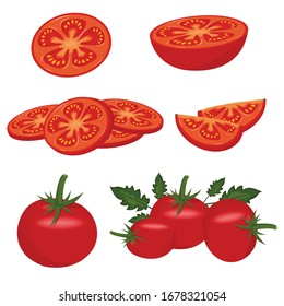 Tomato set. Red tomato collection. vector tomatoes on transparent background.