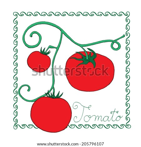 tomato template stock vector royalty free 205796107 shutterstock