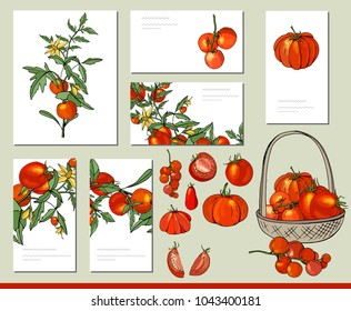 Tomato vegetable set with visitcards and greeting templates.