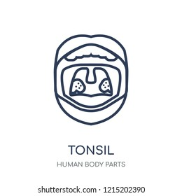 Tonsil icon. Tonsil linear symbol design from Human Body Parts collection.