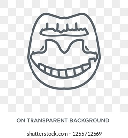 Tonsil icon. Trendy flat vector Tonsil icon on transparent background from Human Body Parts collection. High quality filled Tonsil symbol use for web and mobile