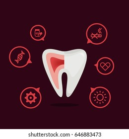 Tooth vector illustration:  infographic