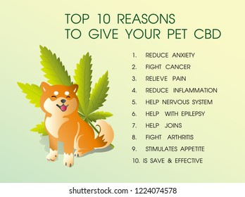 top 10 reasons ti give your pet cbd