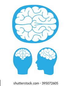 Top, back and left views of the human brain. Vector illustration.