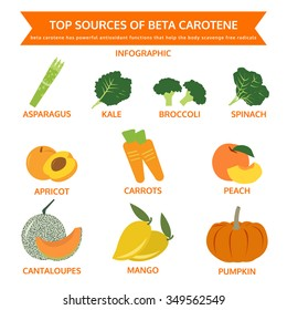 top sources of beta carotene, food info graphic, vector
