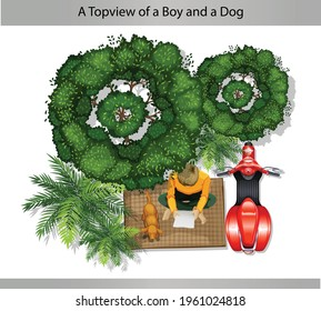 A top view of a boy and a dog