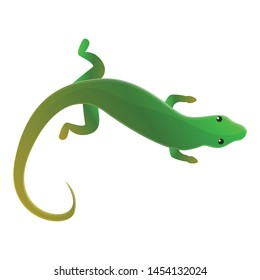 Top view lizard icon. Cartoon of top view lizard vector icon for web design isolated on white background