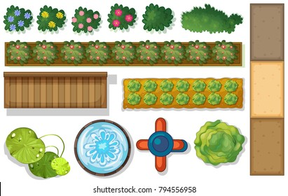Top view of plants and pond in garden illustration