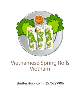 top view of popular food of ASEAN national,Vietnamese Spring Rolls,in cartoon vector design