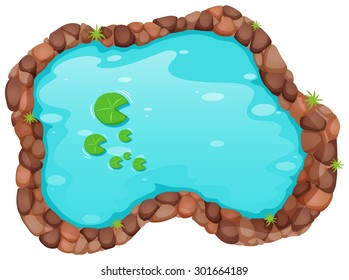 Top view of small pond with water lily