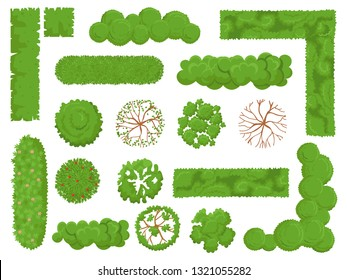 Top view trees and bushes. Forest tree, green park bush and plant map elements look from above. Garden landscape, tree planting nature environment isolated vector icons set