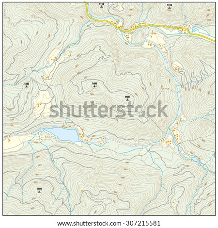 Topographic Map Stock Vector (Royalty Free) 307215581