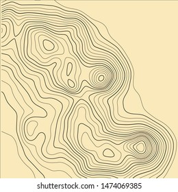 Topographic map background. Grid map. Abstract vector illustration.