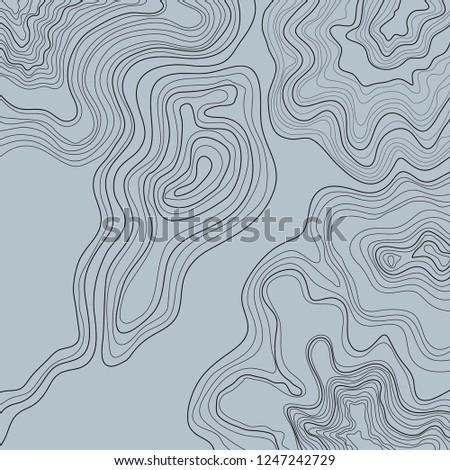 Topographic Map Gray Vector Illustration Stock Vector