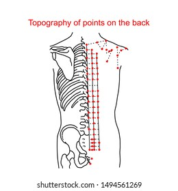 Topography of points on the back