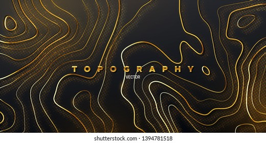 Topography relief. Abstract background. Vector illustration of curvy golden paths textured with shimmering glitters. Outline cartography landscape. Modern poster design. Trendy cover with wavy lines