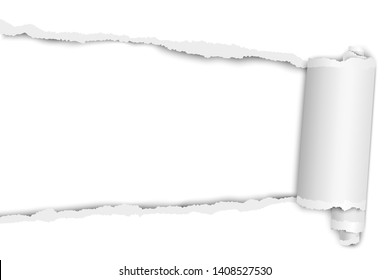 Torn elongated hole from left to right in white paper with paper curl. Vector paper mock up.