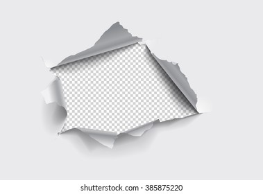 Torn hole in the sheet of paper on a transparent background. Vector illustrations.