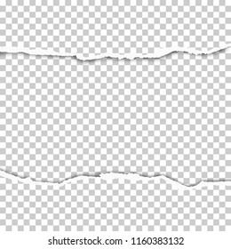 Torn middle of transparent sheet of paper. Vector illustration.