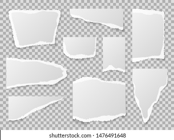 Torn paper. Different shapes of papers scraps, textured memo sheets. Grainy crumpled ripped edge strips, blank page. Vector pieces squares collection template