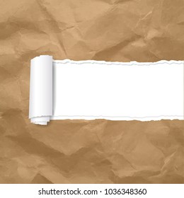 Torn Paper Edge Transparent Background With Gradient Mesh, Vector Illustration