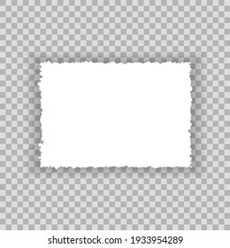 Torn paper edges for background. Ripped paper texture on transparent background. Vector illustration.