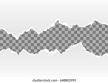 Torn paper. Isolated on transparent background. Vector illustration, eps 10.
