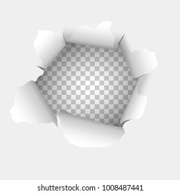 Torn paper with transparent background. Template design for you design.