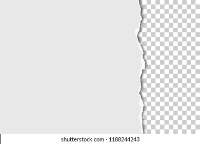 Torn part of sheet of white paper from the up to the down with transparent background. Vector paper mockup.