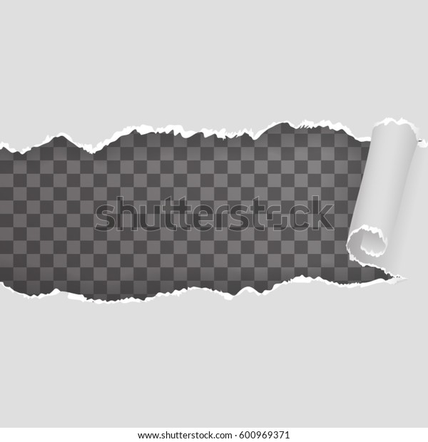 Torn ripped paper seamless pattern transparent realistic background vector illustration
