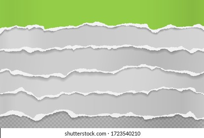 Torn, ripped pieces of horizontal green and white paper with soft shadow are on squared background for text. Vector illustration