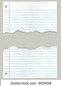 Torn sheet of lined school paper vector illustration