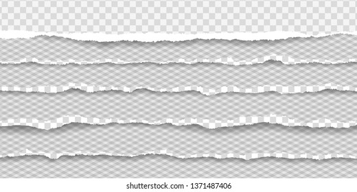 Torn squared horizontal paper strips with soft shadow. Vector illustration background