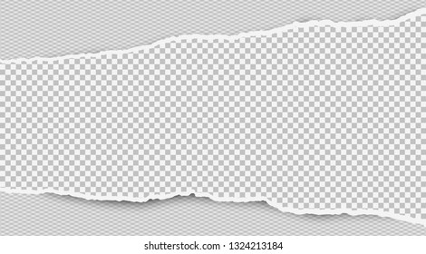 Torn squared white horizontal paper strip is on white background with space for text. Vector illustration