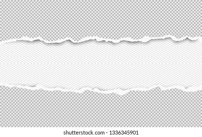 Torn squared white horizontal paper strips are on lined background with space for text. Vector illustration