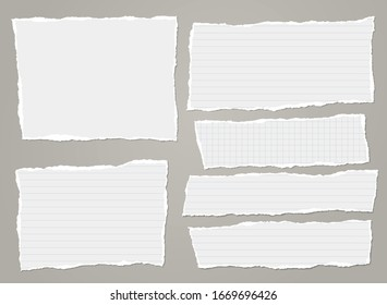 Torn of white lined, math note, notebook paper strips, pieces stuck on grey background. Vector illustration