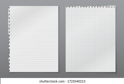 Torn of white, lined and squared note, notebook paper with soft shadow stuck on grey background. Vector illustration