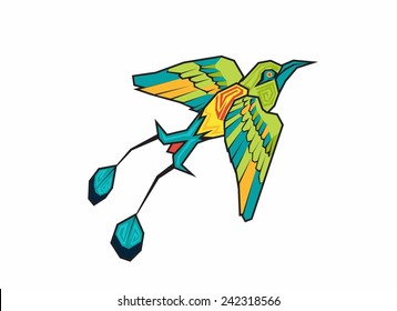 Torogoz bird. Vector illustration.