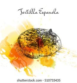 Tortilla Espanola colorful watercolor effect illustration. Vector illustration of Spanish cuisine.