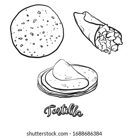 Tortilla food sketch separated on white. Vector drawing of Flatbread, usually known in Mexico. Food illustration series.