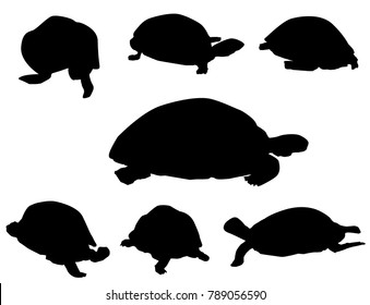 Tortoise Set Tortoise Set is a different poses tortoise silhouette set. it's a vector illustration.
