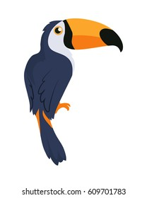 Toucan bird cartoon character. Cute toucan flat vector isolated on white. South America fauna. Guinea pig icon. Wild animal illustration for zoo ad, nature concept, children book illustrating