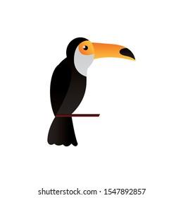 Toucan cartoon design, Animal cute zoo life nature and fauna theme Vector illustration