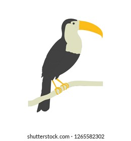 Toucan Clip icon vector symbol isolated. Vector illustration. Vector icon illustration isolated on white background.