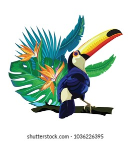 Toucan, exotic birds, tropical flowers, palm leaves, jungle leaves, bird of paradise.