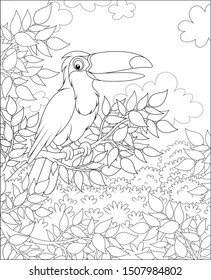 Toucan with a funny beak perched on a tree branch in tropical jungle, black and white vector illustrations in a cartoon style for a coloring book