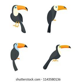 Toucan parrot bird icons set. Flat illustration of 4 toucan parrot bird vector icons isolated on white