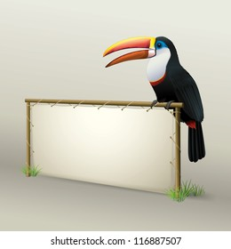 Toucan Sitting on Natural Advertising Panel made from Wood and Leather